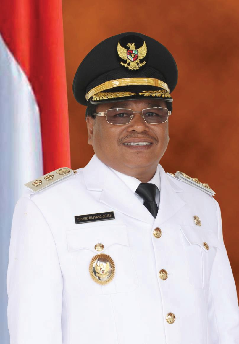 Pemerintah Provinsi Papua